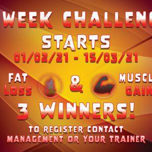 6_Week_Challenge